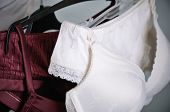 image of silk lingerie  - white and vinous lace lingerie hanging on the hanger close up horizontal - JPG