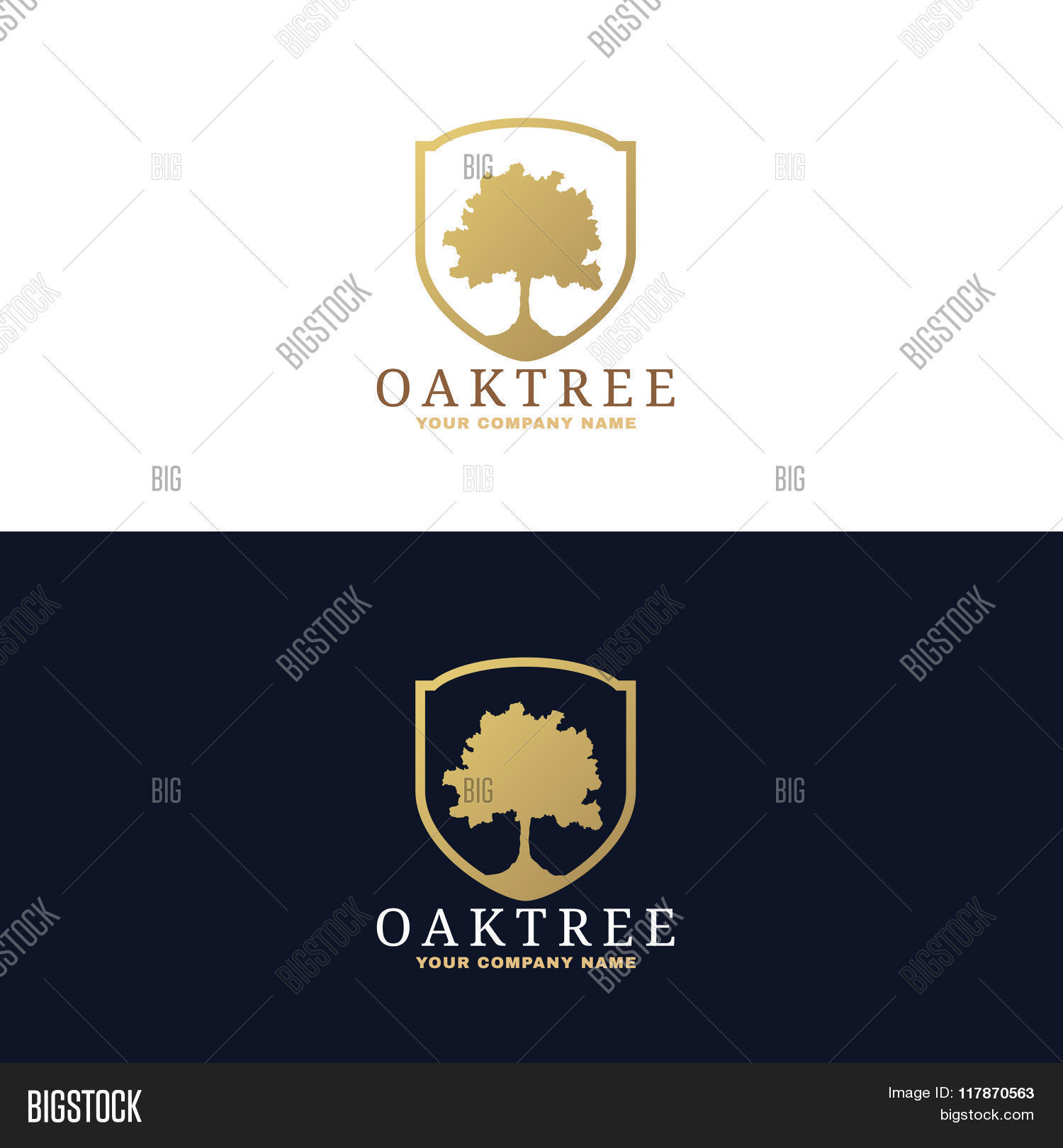 gold dark blue oak tree logo vector u0026 photo bigstock