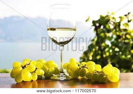 Wineglass and bunch of grapes against Geneva lake. Lavaux region, Switzerland