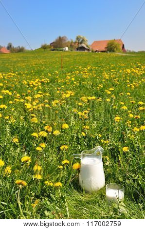 Jug of milk on the meadow. Emmental region, Switzerland