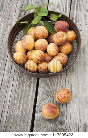 A Plate Of Ripe Apricots.