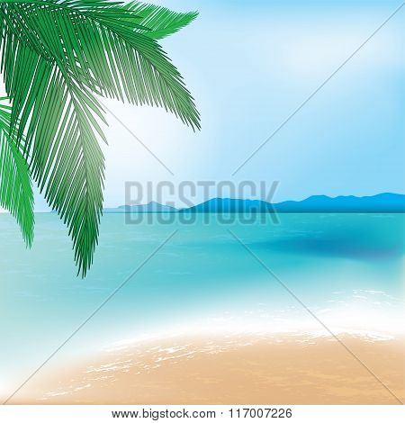Beach And Sea Background With Palm Branch