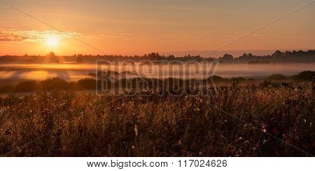 Summer Sunrise Over The Small Village And The Meadow