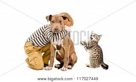 Affectionate boy, pitbull puppy and a kitten