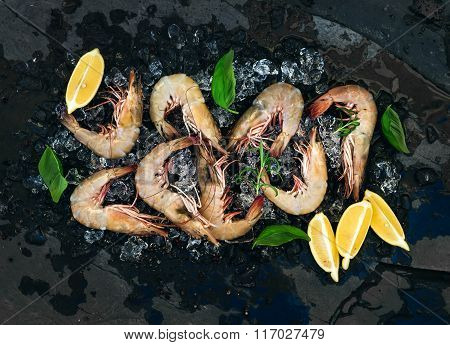 Fresh uncooked shrimps with lemon, herbs and spices on chipped ice over dark slate stone backdrop, h