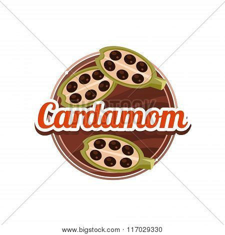 Cardamom Spice. Vector Illustration.