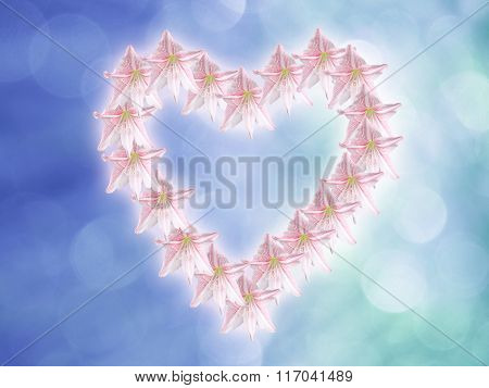 Pink Amaryllis Forming A Heart Shape