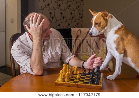 Dog and mature man discussing capitulation conditions in a chess family tournament