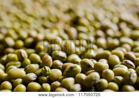 Background Of  Mung Beans
