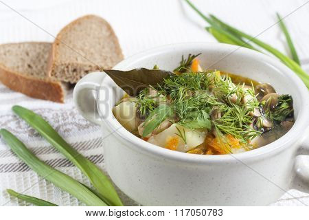 Vegetables and mushroom soup with herbs in a clay tureens on the table