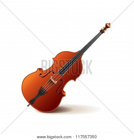 Contrabass Isolated On White Vector
