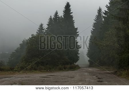 Landscape with heavy fog of Petrohan passage at Balkan mountain in rainy day