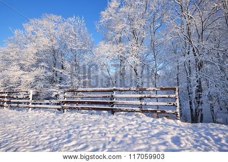 Fence In A Winter Wonderland With Hoarfrost And Snow Covered Trees On A Sunny Day