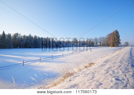 View From A Side Of The Road To The Snowy Rural Field, Forest And Fence At Winter
