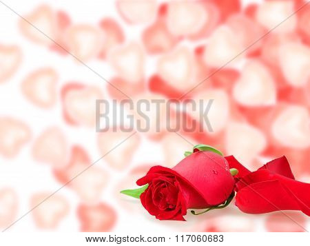 Frame  With A Roses And Bokeh Shape Of Hearts
