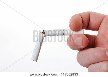 Close Up Of Broken Cigarette