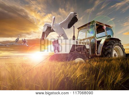 Rural world and  travel concept