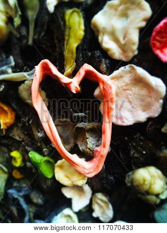 Gum Heart I love you
