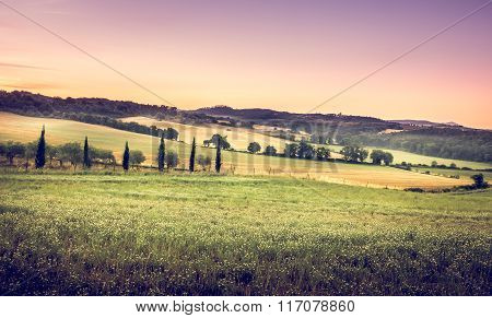 Tuscan Morning Landscape