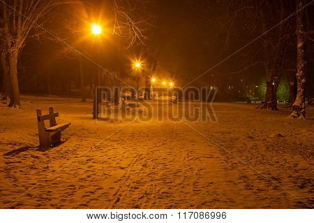 Park At Night At Winter
