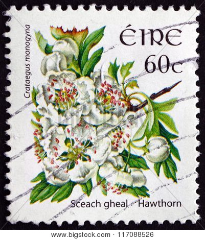 Postage Stamp Ireland 2004 Hawthorn, Shrub