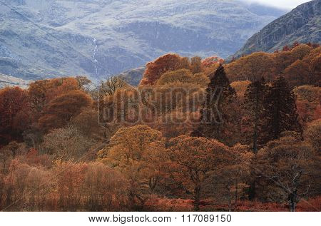 Stunning Autumn Fall Color Landscape Of Lake District In Cumbria England