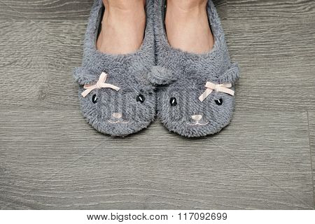 Female Legs In Slippers