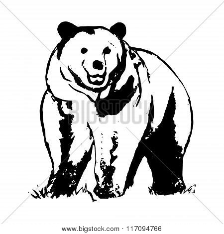 Brown Bear 0 (pattern Abstraction)