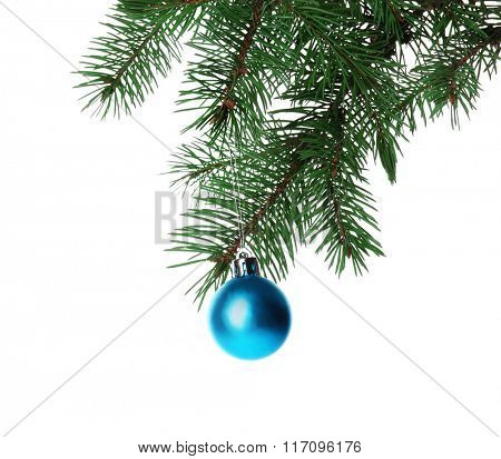 Blue bauble on a Christmas tree branch, isolated on white