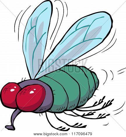 Cartoon Green Fly