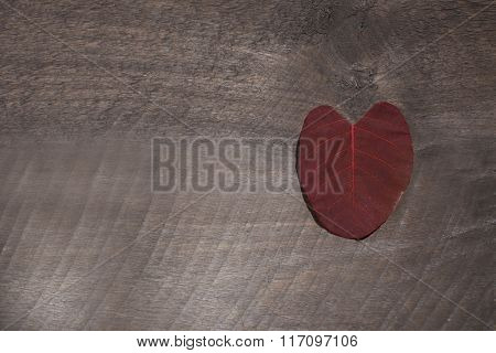 Brown  leaf on wooden textured background