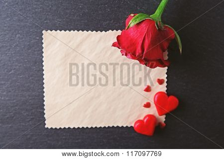 Fresh rose with blank present card on black textured background
