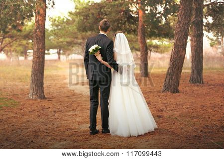 Beautiful groom and bride standing back on a forest background