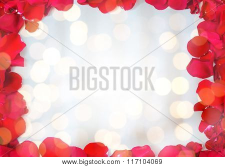 close up of red rose petals blank frame