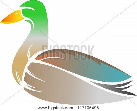stock logo duck