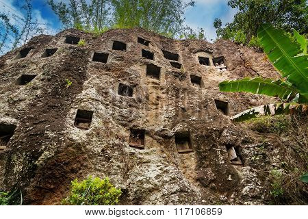 Traditional Cave Graves Carved In The Rock At Lemo. Tana Toraja, South Sulawesi, Indonesia