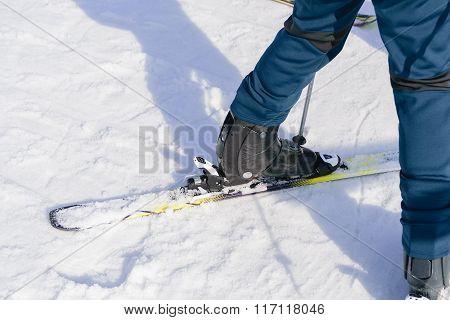 Girl On Ski Standing.