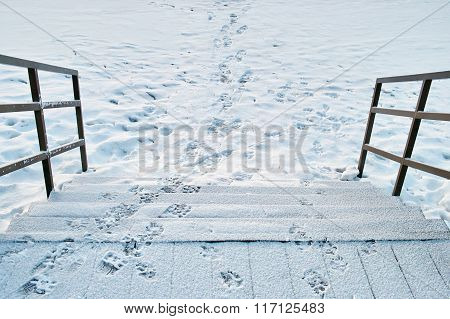Slippery Wooden Steps