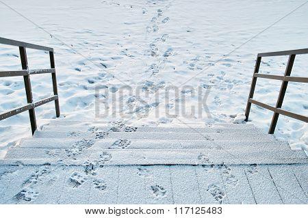Slippery Wooden Steps