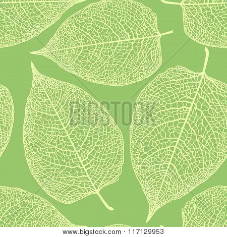 Leaf Skeleton Pattern