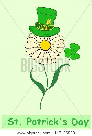Camomile of a St. Patrick's Day