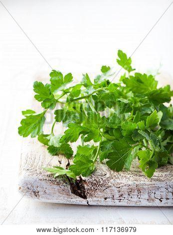 Organic fresh Parsley on grey wooden background