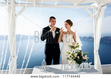 Newlywed Couple Drinking Champagne In Glasses And Smiling Closeup Sea Background