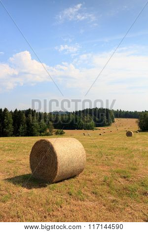 Hay Bales On Field In Saxon Switzerland, Germany