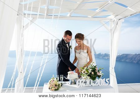 Bride And Groom Carving Delicious White Wedding Cake Sea Background