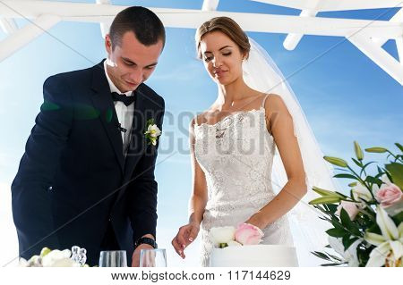 Bride And Groom Carving Delicious White Wedding Cake Closeup