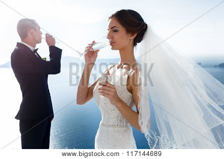 Newlywed Couple Drinking Champagne In Glasses Closeup Sea Background
