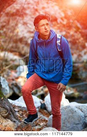 man hiking in beautiful forest