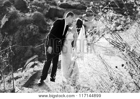 Happy Bride And Groom Kissing And Walking On Stairs In Mountains B&w