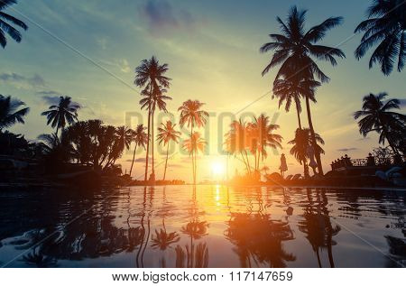 Palm trees silhouette at amazing sunset on the beach in the tropics.